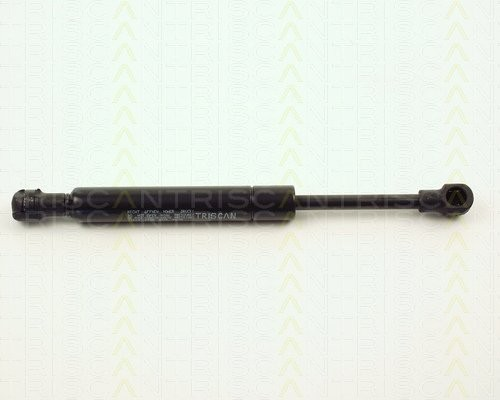 2 Stück Gasfeder Koffer- / Laderaum TRISCAN BMW Z3 E36